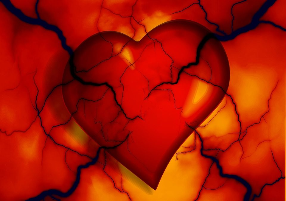 Healthy heart and blood vessels